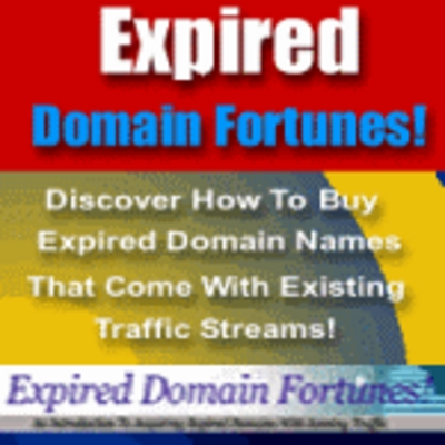 Product picture Expired domain fortunes - how to buy expired domain names